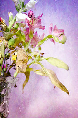 Photograph - Life And Death Flowers by Crystal Wightman