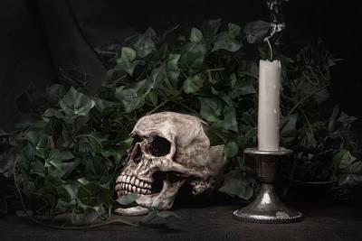 Deaths Head Photograph - Life And Death by Tom Mc Nemar