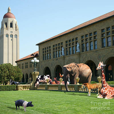Elephants Digital Art - Life Down On The Farm Stanford University California Square V2 Dsc685 by Wingsdomain Art and Photography