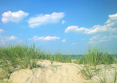 Life Is A Beach Art Print by Diane Diederich