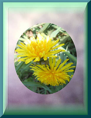 Life Is Made Up Of Dandelions Art Print by Patricia Keller