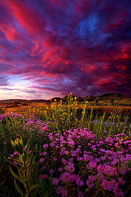 Life Love And Hope Art Print by Phil Koch