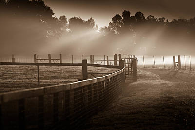 Photograph - Life On The Farm by John Magyar Photography