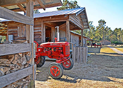 Photograph - Life On The Farm by Linda Brown