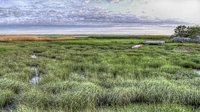 Photograph - Life On The Marsh by Rick Mosher