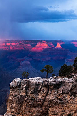 Photograph - Life On The Rim by Ed Gleichman