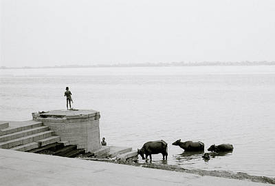 Life On The River Ganges Original by Shaun Higson