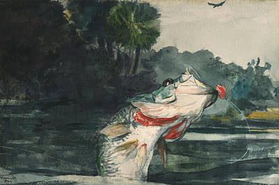 Wall Art - Painting - Life Size Black Bass by Winslow Homer