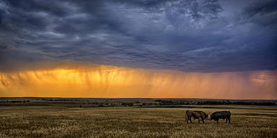 Prairie Storm Photograph - Lifeblood by Thomas Zimmerman