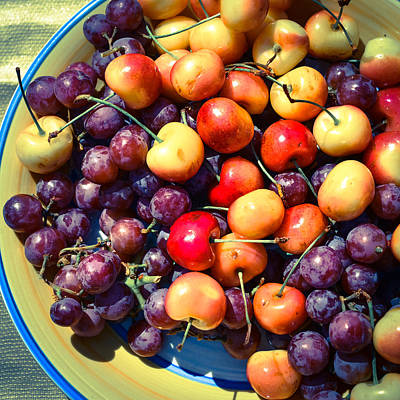 Photograph - Life's A Palette Of Cherries And Grapes by Ronda Broatch