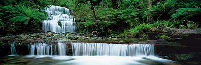 Gentle Cascades Photograph - Liffey Falls, Tasmania, Australia by Panoramic Images