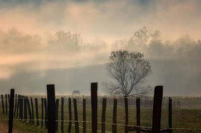 Photograph - Lifting Fog by Joan Herwig