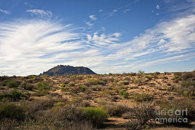 Photograph - Light After Rain In The Sonoran Desert by Lee Craig