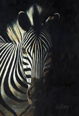 Zebra Art Painting - Light And Shade by David Stribbling