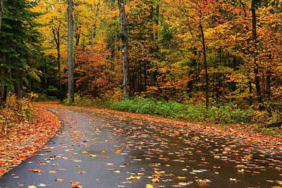 Light Autumn Rain Art Print by Rachel Cohen