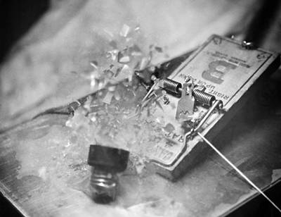 High Speed Photograph - Light Bulb In A Mouse Trap by Underwood Archives