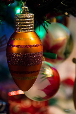 Photograph - Light Bulb Ornament by Mick Anderson