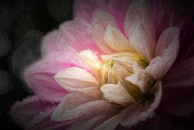 Light From Within Art Print by Mary Jo Allen