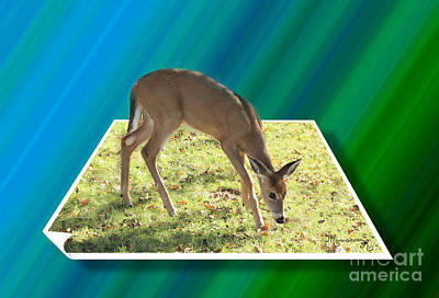 Digital Art - Light Grazing by Mariarosa Rockefeller