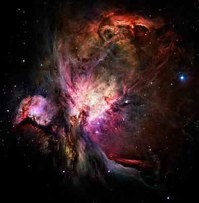 Photograph - Light Hawk - Orion Nebula M-42 by Weston Westmoreland