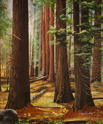 Giant Sequoia Painting - Light In The Forest by Bill Dunkley