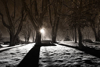 Light Photograph - Light In The Shadows by Gloria Pasko