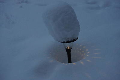 Photograph - Light In The Snow by Ron Read