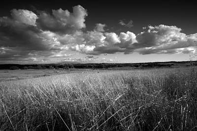 Santa Rosa Photograph - Light On The Grasslands by Peter Tellone