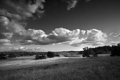 Santa Rosa Photograph - Light On The Meadow by Peter Tellone