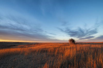 Photograph - Light On The Winter Prairie by Scott Bean