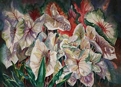 Light Play Caladiums Art Print