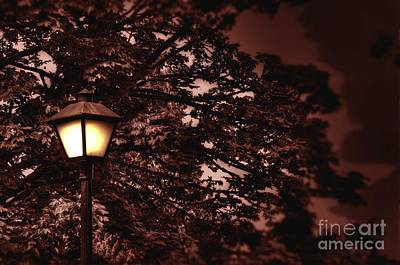 Photograph - Light Post At Capitol by Phillip Garcia
