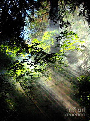 Sun Rays Painting - Light Rays by Shasta Eone