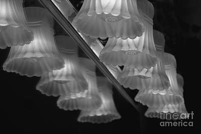 Light Reflections Art Print