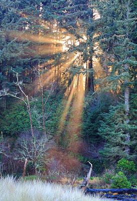 Green Light Photograph - Light Shine by Robert Bynum