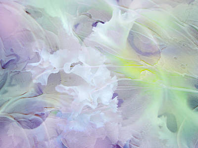 Photograph - Light Touch Of Tenderness. Petals Abstract by Jenny Rainbow