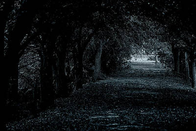Art Print featuring the photograph Light Tunnel by Lorenzo Cassina