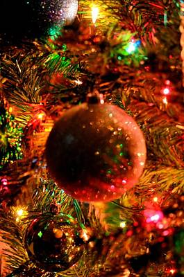 Photograph - Light Up The Christmas Tree by Maria Urso
