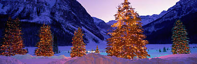 Snowy Night Photograph - Lighted Christmas Trees, Chateau Lake by Panoramic Images