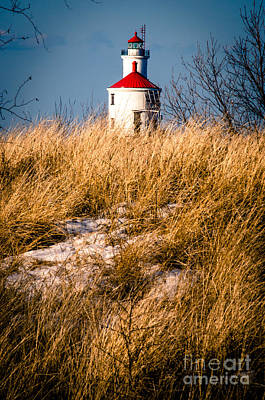 Photograph - Lighthouse Amongst The Tall Grass by Mark David Zahn
