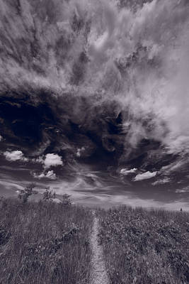 Lighthouse Beach Dunes Bw Art Print by Steve Gadomski