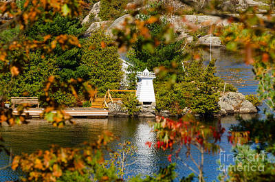 Photograph - Lighthouse Through The Leaves by Les Palenik