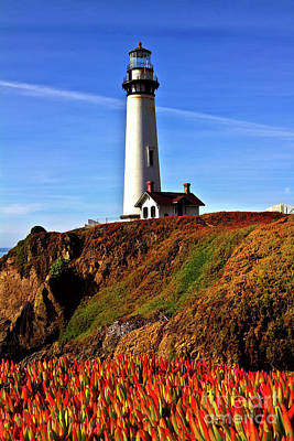 Print featuring the photograph Lighthouse With Red Blooms by Charles Lupica