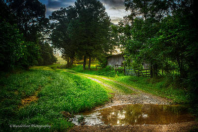 Photograph - Lighting The Pathway Home by Paul Herrmann