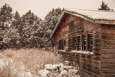 Art Print featuring the photograph Snowing Softly by Shirley Heier