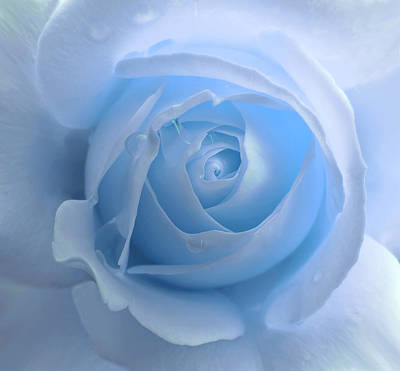 Game Of Chess - Lightness of a Blue Rose Flower by Jennie Marie Schell