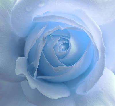 Photograph - Lightness Of A Blue Rose Flower by Jennie Marie Schell