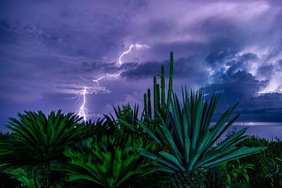 Lightning During Storm Art Print by Dmitry Sergeev