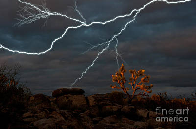 Lightning, Joshua Tree Highway Art Print by Mark Newman