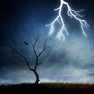 Raven Photograph - Lightning Tree by Sebastien Del Grosso